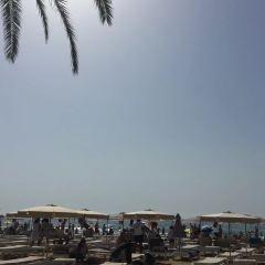 Arenal Beach用戶圖片