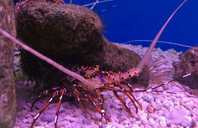 해양박물관