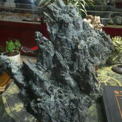 Qiangui Strange Stone Culture Root Carving Art Museum User Photo