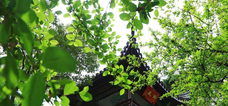 南京總統府3