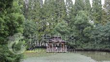 黄山湖公园