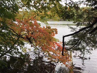 Oak Ridges Corridor Conservation Reserve Trail
