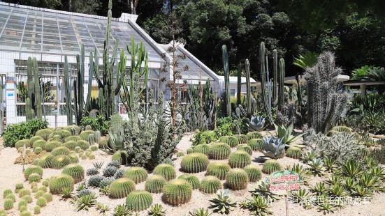 蔭生植物園