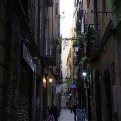 Carrer Ferran User Photo