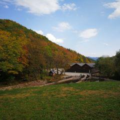 Yunlingye Shan Can Sceneic Area User Photo