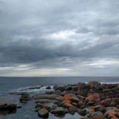 火焰灣用戶圖片