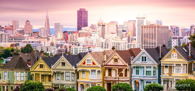 Painted Ladies - Alamo Square2