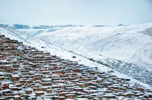 新疆,四季時令