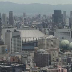 쿄세라 돔 오사카 여행 사진