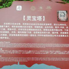 Lingbao Tower User Photo