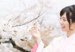 賞櫻還太早?日本櫻花接力第一棒即將打響!櫻花只開七日,錯過等一年!
