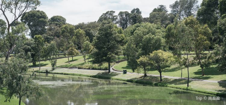 River Torrens Linear Park Trail1