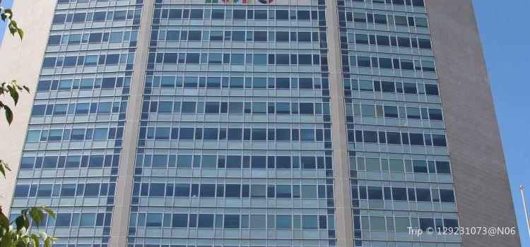 Pirelli Tower1