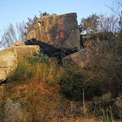 莫干山景區用戶圖片