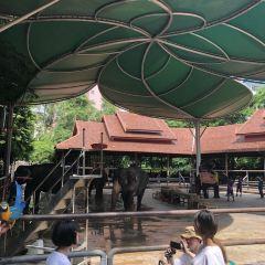Manjinglan Tourist Village User Photo