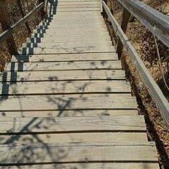 Runyon Canyon Park User Photo