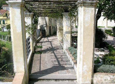 Minerva's Garden2