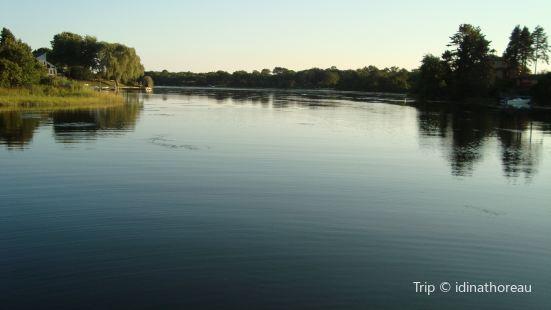Saltwater Pond