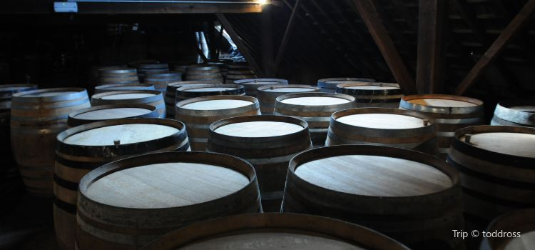Cantillon Brewery1