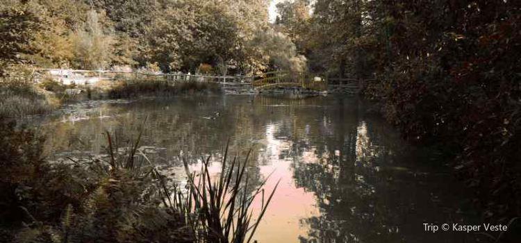 Robin Hill Adventure Park1