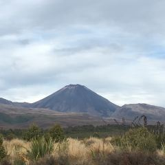 Mount Ngauruhoe User Photo