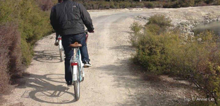 Happy Ewe Cycle Tours2