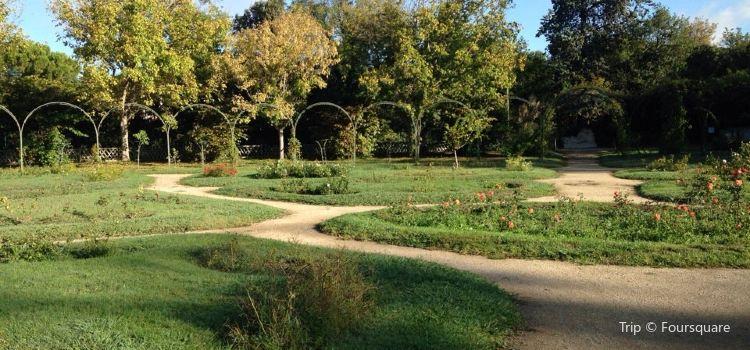 博雷利公園3