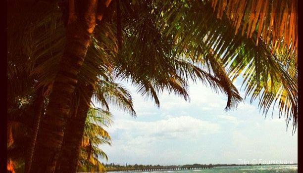 Tela Beach3