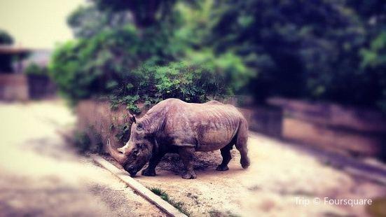 福岡市立動植物園