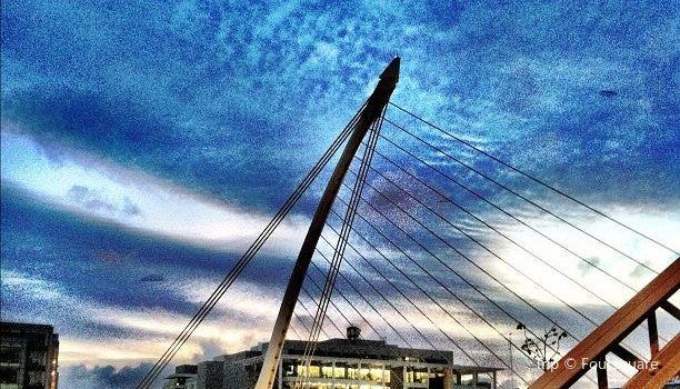Samuel Beckett Bridge3