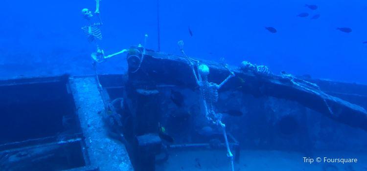 Atlantis Submarines Kona3