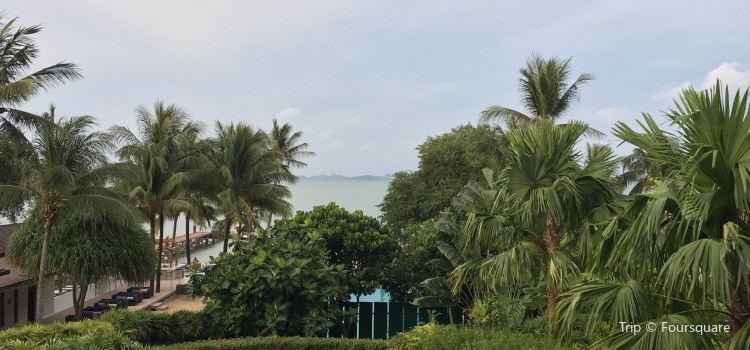 The Village Coconut Island1
