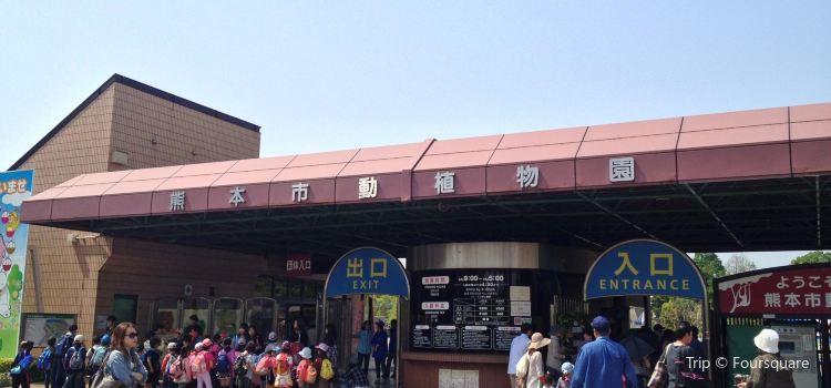 熊本市動植物園1