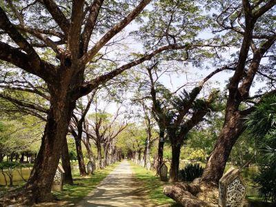 馬可波羅公園