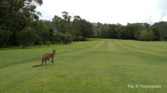 Noosa Valley Golf Club
