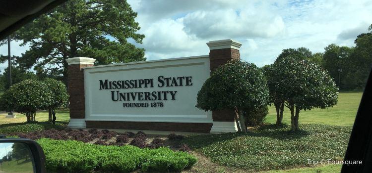 Mississippi State University1