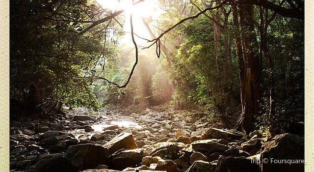 Quebrada Valencia1
