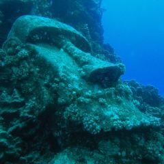 Mike Rapu Diving Center用戶圖片