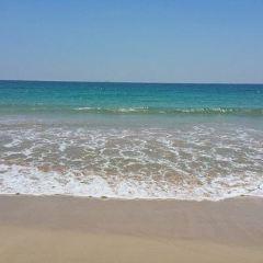 美蕊沙海灘用戶圖片