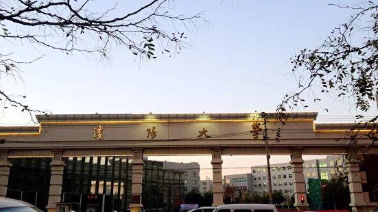 Shenyang University