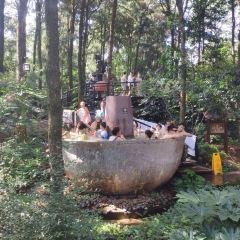 금방 산림 온천 여행 사진