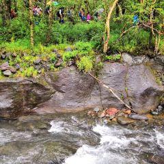 루수이허국가삼림공원 여행 사진