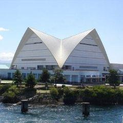 鹿兒島水族館用戶圖片