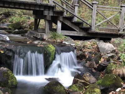 鏵子山森林公園