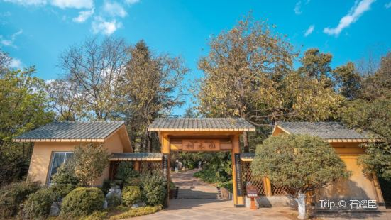 昆明樹木園