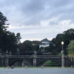 皇居外苑用戶圖片
