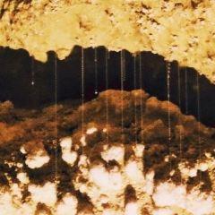 懷托摩螢火蟲洞用戶圖片