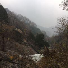 타이산 관광지(태산 관광지) 여행 사진