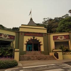 Taronga Zoo User Photo