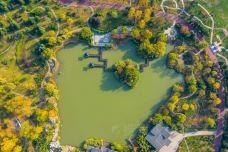 鄢陵国家花木博览园-鄢陵-耀晨影像